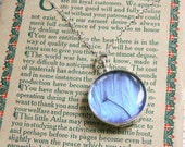 Real Blue Morpho Wing Necklace Sterling Silver