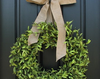 "Boxwood Wreaths - 17"" Artificial Boxwood - Boxwood Decor - Year Round Wreath - Simple and Modern - Burlap Bows"