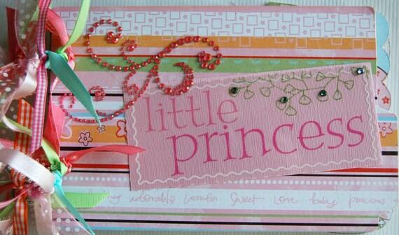snugglebug baby girl chipboard/ acrylic mini album premade ready to ship by urbansavanna