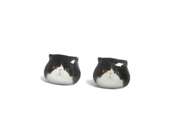 Cute Black and white Exotic Cat Kitten Stud Earrings / cat earrings / black and white cat / cat jewelry / kitten / tabby cat  /  A025ER-C13
