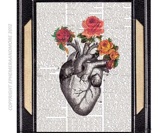 ANATOMICAL HEART illustration with vintage roses art print on old dictionary text book page love wedding anniversary human anatomy 8x10, 5x7