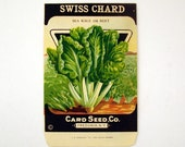 Vintage 1920s Unused Paper Seed Packet Swiss Chard