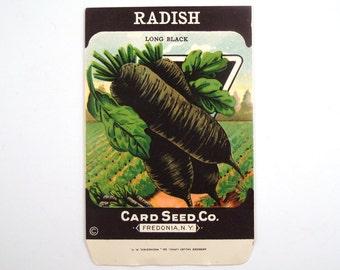 Vintage 1920s Unused Paper Seed Packet Black Radish
