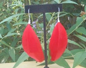 Red Feather Dangle Earrings