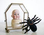 SALE - Spooky Halloween Decor - Antique Doll Head in Glass Box