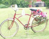 Vintage Bicycle......Possible Monark.......Rides Like A Cadillac......Pick Up Only.........