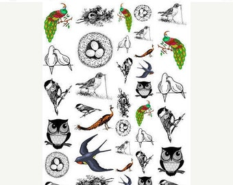 Sepia Decals for Image Transfer Onto Glass36 Bird Images  Fused Glass Decal Tutorial  06.36Birds