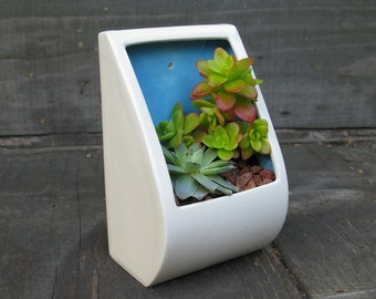 Big Pocket Planter - perfect for succulents