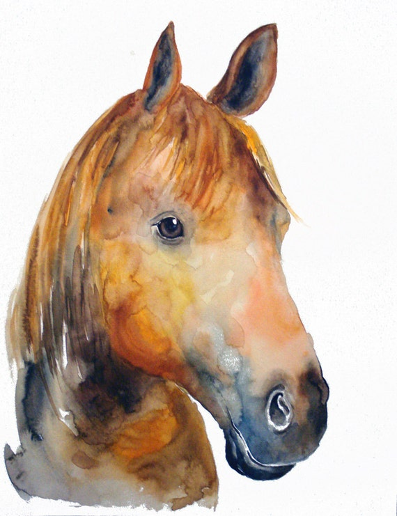HORSE by DIMDIart Original watercolor painting 11X14inch