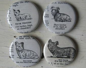Skye Terrier Vintage Dictionary Illustration Magnet Set of 4