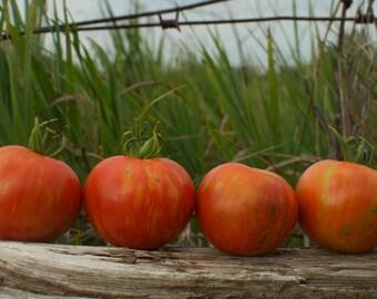 Tigerella Heirloom Tomato Seeds
