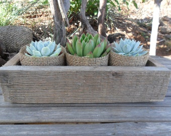 Succulent Centerpiece, Rustic Box, Great For Weddings, Cocktail Parties And Other Special Events, Housewarming Gift