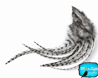 Hair Feathers, 1 Dozen - NATURAL Black and White Medium Grizzly Rooster Hair Extension Feathers : 372