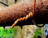 "Urban Decay Graffiti Rusty Fence 8x8"" photography"