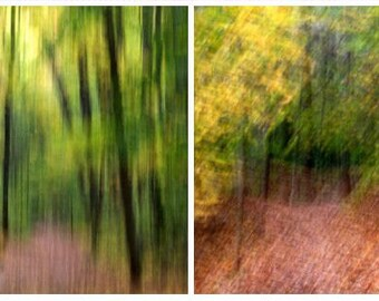 Abstract Photograph,  Nature Photography, Combo Pack,  Fine Art Print,  Ghosts of Fall,  Enter the Unknown,16X20 Prints,  Landscape