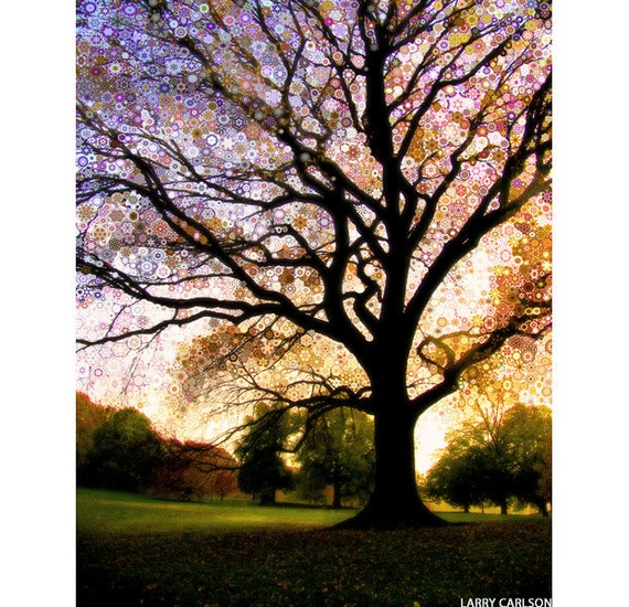 Morning.Star.Tree...16x20 fine art nature landscape photo print / psychedelic visionary art