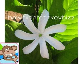 PINWHEEL TIARE (Tahitian Gardenia) - Hawaiian Hair Pick or Clip . . .