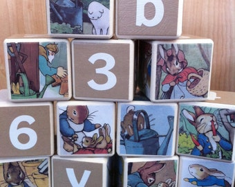 Peter Rabbit Building Blocks