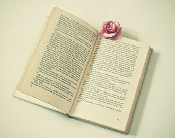 A Good Read - Book photograph, open book, literature, novel, words, pink rose, flower, simple, home decor