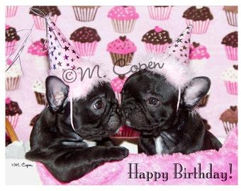 Happy Birthday French Bulldog Cards - Set of 2 Cards