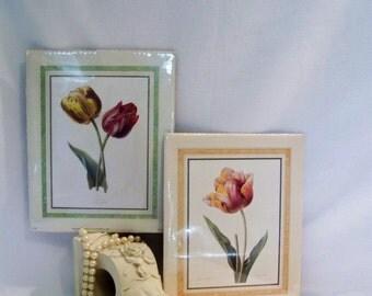 Vintage Pair Botanical Litho Prints Tulips Free Shipping
