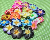 50pcs... Colorful Polymer Clay Plumeria Frangipani Flower Beads... Pick Your Colors