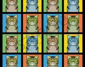 Exotic Shorthair Cat Cartoon Pop-Art T-Shirt Tee - Men's, Women's Ladies, Short, Long Sleeve, Youth Kids