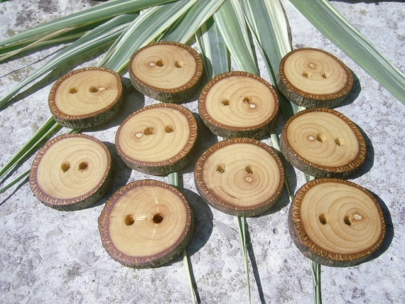 """Wood Buttons - 10 LINDEN Tree Branch Wooden Buttons, Size Is 7/8"""" in diameter"""