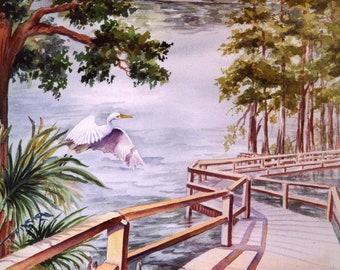 ACEO or 5 x 7 Note Card watercolor print, Riverwalk 676 Florida nature park watercolorsNmore