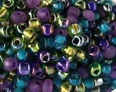 Royalty 6/0 Seed Bead Mix 15 grams