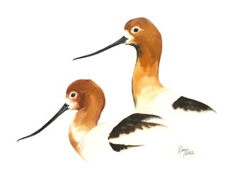"Limited Edition GICLEE MINI Print /  ""Avocet Pair"" /  Watercolor Painting of Avocets"