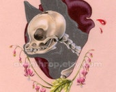 "Chihuahua Skull Illustration 5""x7"" Giclee Mini Print - ""Bleeding Heart"""