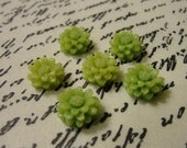 12mm...small/mini green chrysanthemum....6 pcs.