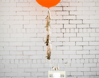 Balloon Tassels: Blush