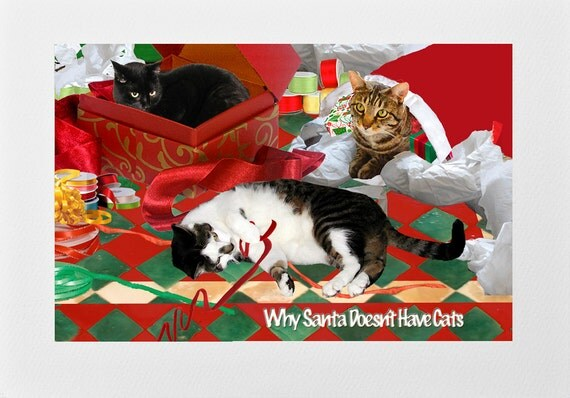 Cat christmas card funny handmade framable cat art why etsy m4hsunfo