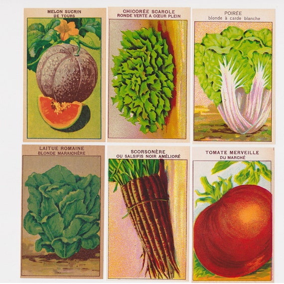 Set Of 10 Country Garden Flower Seed Wedding Favours With: 24 Vegetable Labels For Seed Packets By Simplyfrenchvintage