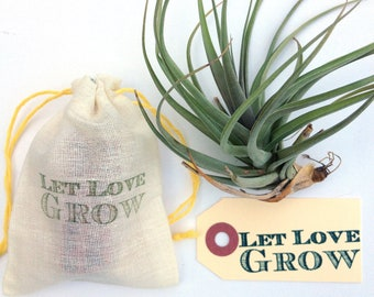 Let Love Grow. Custom Wedding Stamp for Favors or Decoration. Perfect for the DIY Bride. Ready to Ship.