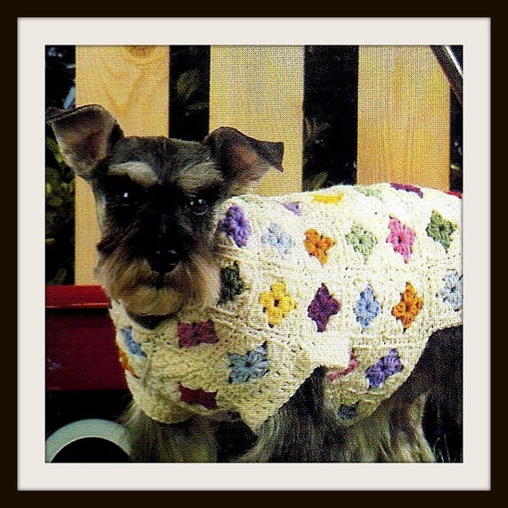Free Crochet Granny Square Dog Sweater : Unavailable Listing on Etsy