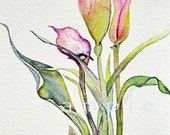 custom listing for jacqie,  Cala Lily Fine Art card