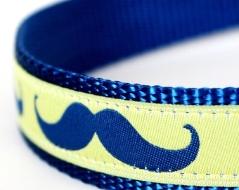 Mustache Dog Collar  / 1 inch width / Big Print Royal Blue and Yellow