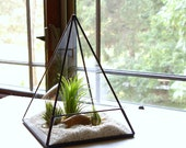 Terrarium, Glass Pyramid Planter with Air Plant, DIY Kit, Desk Accessory