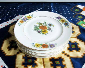 Vintage Floral Czech Porcelain Dishes / Set of 6