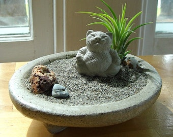 SALE! Lucky Cat Buddha Sculpture in Zen Garden Air Plant Terrarium / Cat Lover Gift
