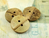 Bamboo Buttons - 10 pieces of Original Bamboo Joint 2 Holes Buttons, 0.91 inch