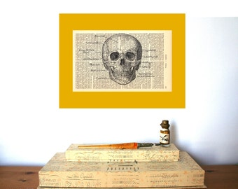 Anatomical Skull Vintage Art Print on Antique 1896 Dictionary Book Page