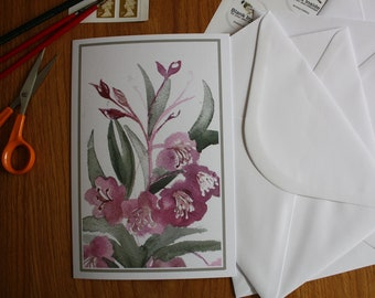 Bay Willow Herb Card
