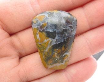 Stone Canyon Jasper Free Form Cabochon