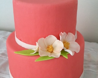 Bridal Shower Cake, Valentine cake, Sweet Sixteen Cake