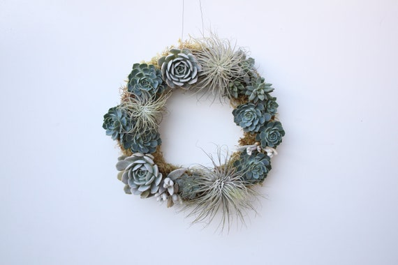 Icy Succulent and Tillandsia Wreath