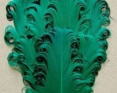 Kelly Green and Black Nagorie Feather Pad